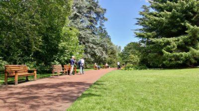 Royal Botanic Garden, Edynburg. Foto: M. Błażejczak