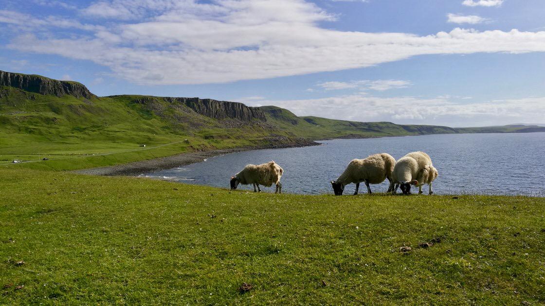 Wyspa Skye, foto: M. Błażejczak