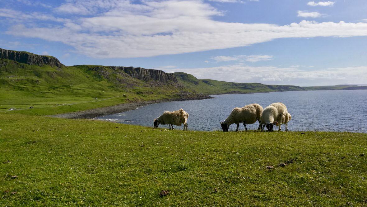 Szkocja, foto: M. Błażejczak