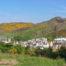 Co zobaczyć w Edynburgu? Sprawdź listę atrakcji w artykule na Szkocki.pl! Foto: M. Błażejczak